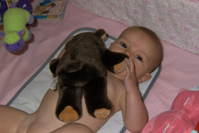 Lovin' my Aunt Dana bear @ 5 months