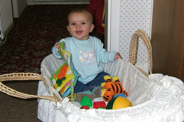 Sittin' in my basket @ 5 months